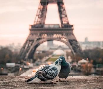 Day use Paris